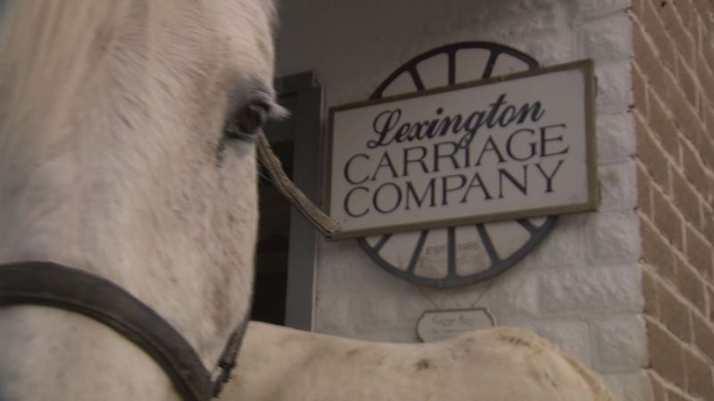 The Lexington Carriage Company in Lexington, Va.