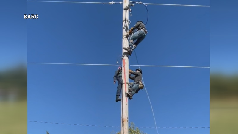 One event simulates rescuing someone from a tall pole.