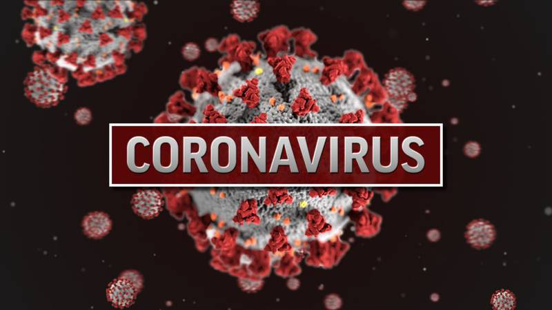 Virginia Senator criticizes Governor's vaccination plan