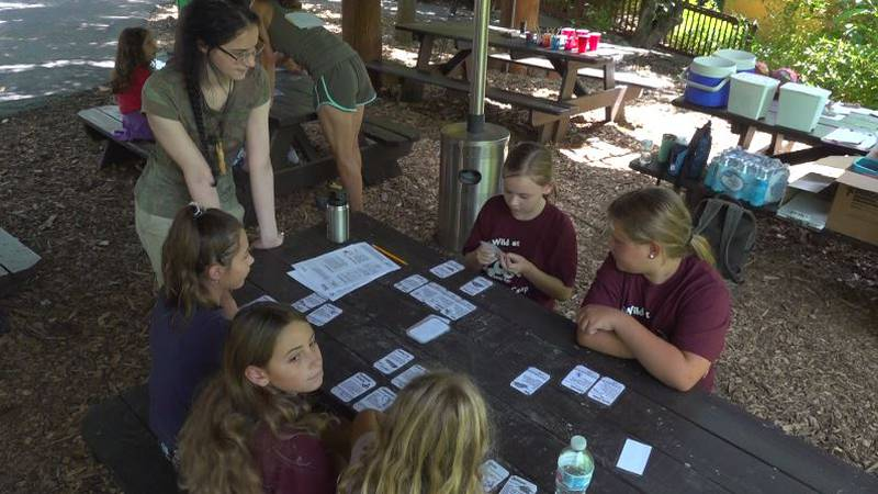 Mill Mountain Zoo hosts summer camps