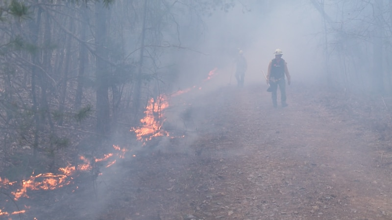 Crews from VDOF monitor a controlled burn near Huddleston in Bedford County.