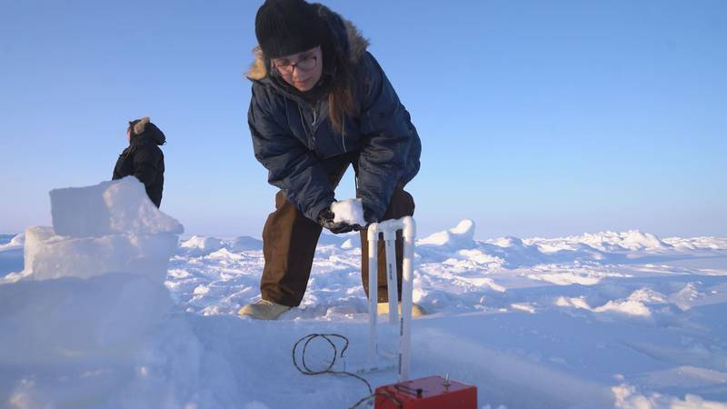 The students will study Arctic sea ice while living and working in Northern Alaska for about a...