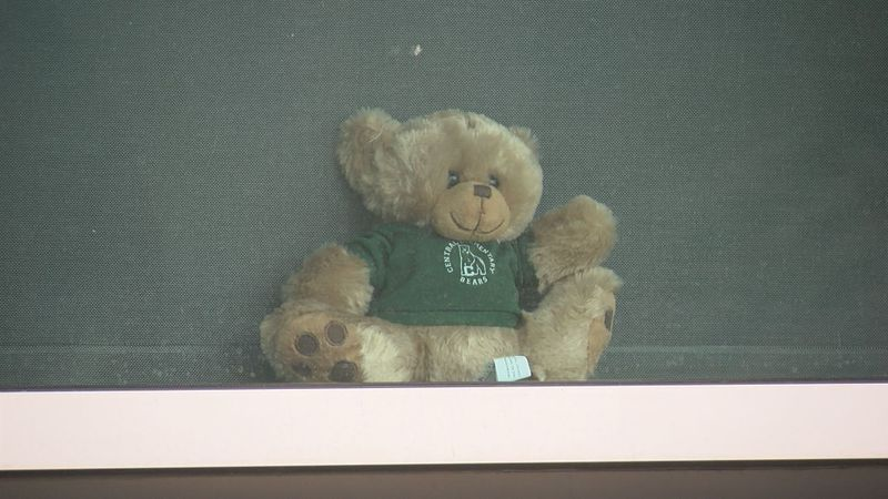 A teddy bear waves from theoffice window of Central Elementary School's principal.
