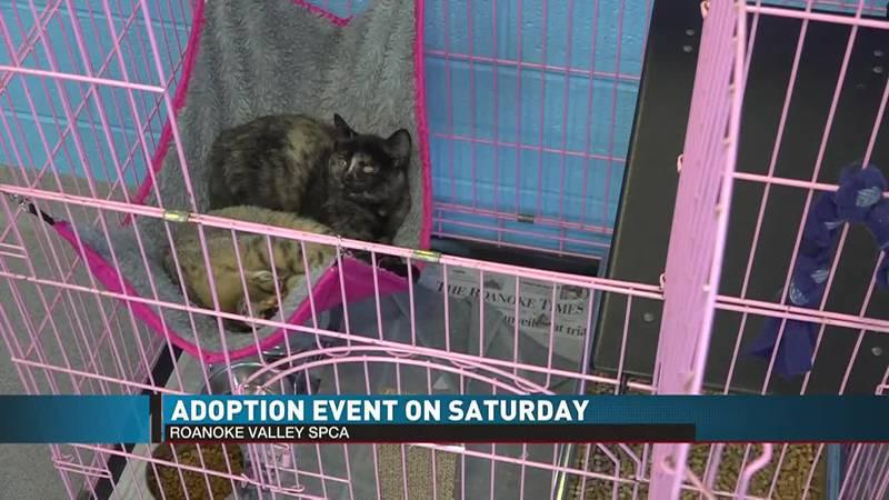 Roanoke Valley Pet Event
