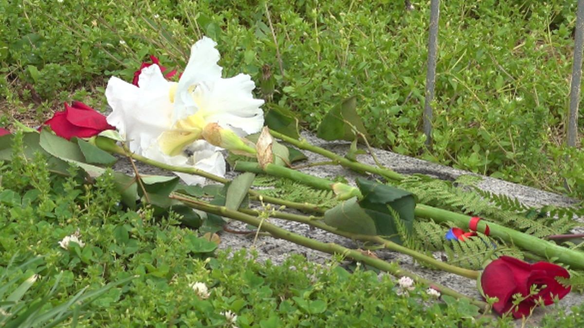 Roses were laid Monday on the grave of one of the Bedford Boys. WDBJ7 photo.