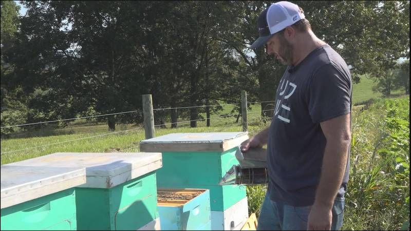 Bert Perkey tends to his bees at Beaver Dam Farm in Botetourt County, where they will be...