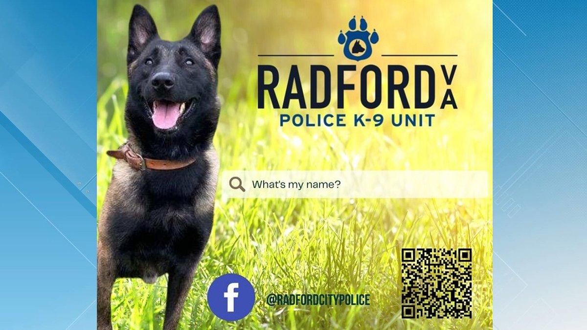Radford PD K9 Naming Contest