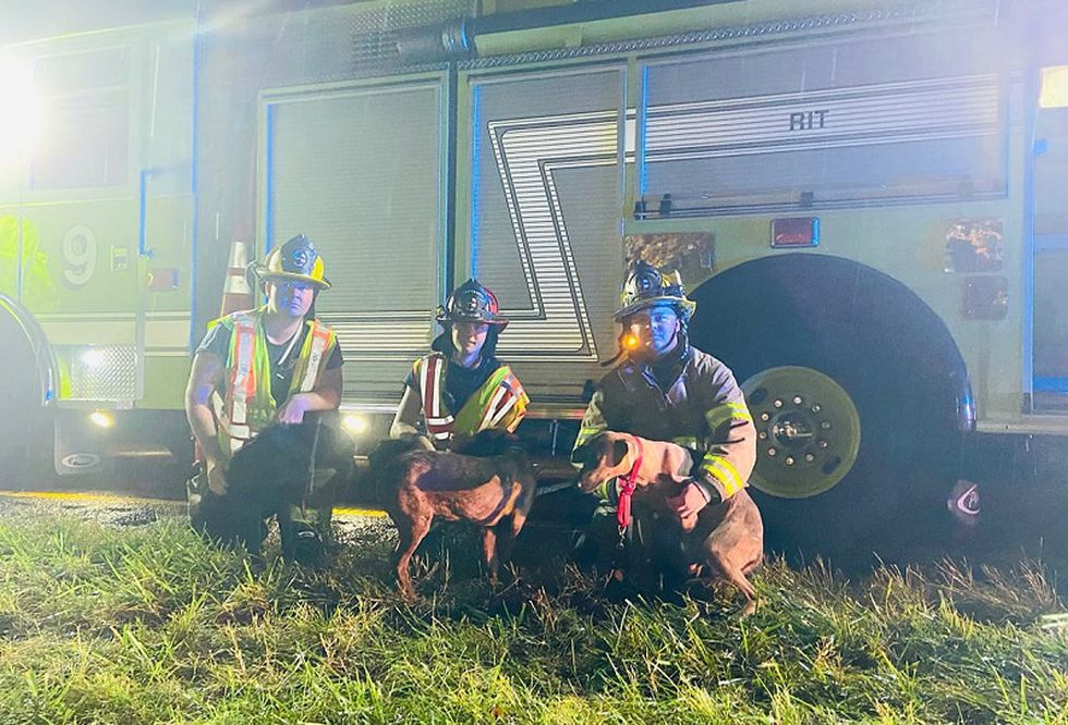 Fort Lewis FD handles dogs after crash on I-81 in Roanoke County