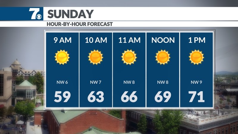 Sunny and comfortable today.