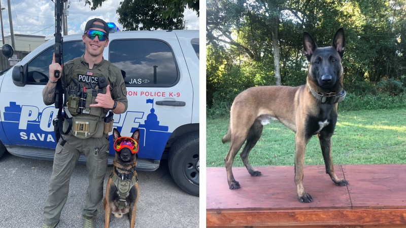K-9 Jas and his handler, Officer Jon Lindsey, were part of the Savannah Police Department's...
