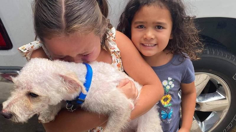 Max's humans were overwhelmed with emotions and tears of joy streamed down their faces as they...