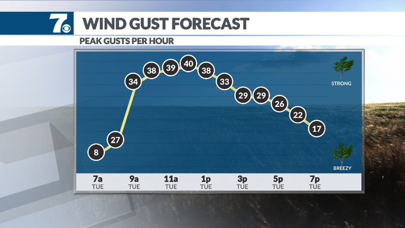 As the rain tapers off early Tuesday, winds begin to increase which may lead to additional...
