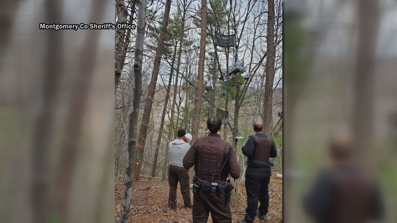 One tree sitter has been arrested and police are working to remove the second and final person.