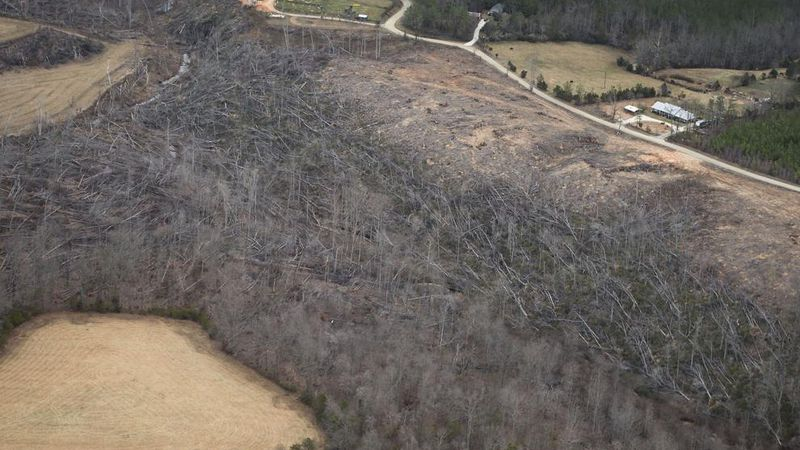 Hundreds of trees broken and downed by powerful tornadic winds in Appomattox County.