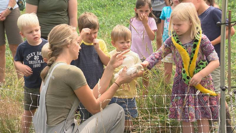 Kids reach out to touch a chicken during their visit to Fireside at Oakley Farm in Bath County.