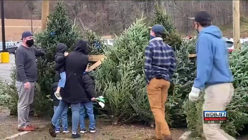 Sweet Providence Christmas Tree Lot