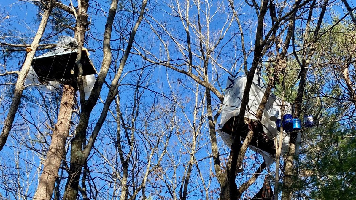 Pipeline opponents react to injunction ordering tree sitters to end Montgomery County blockade