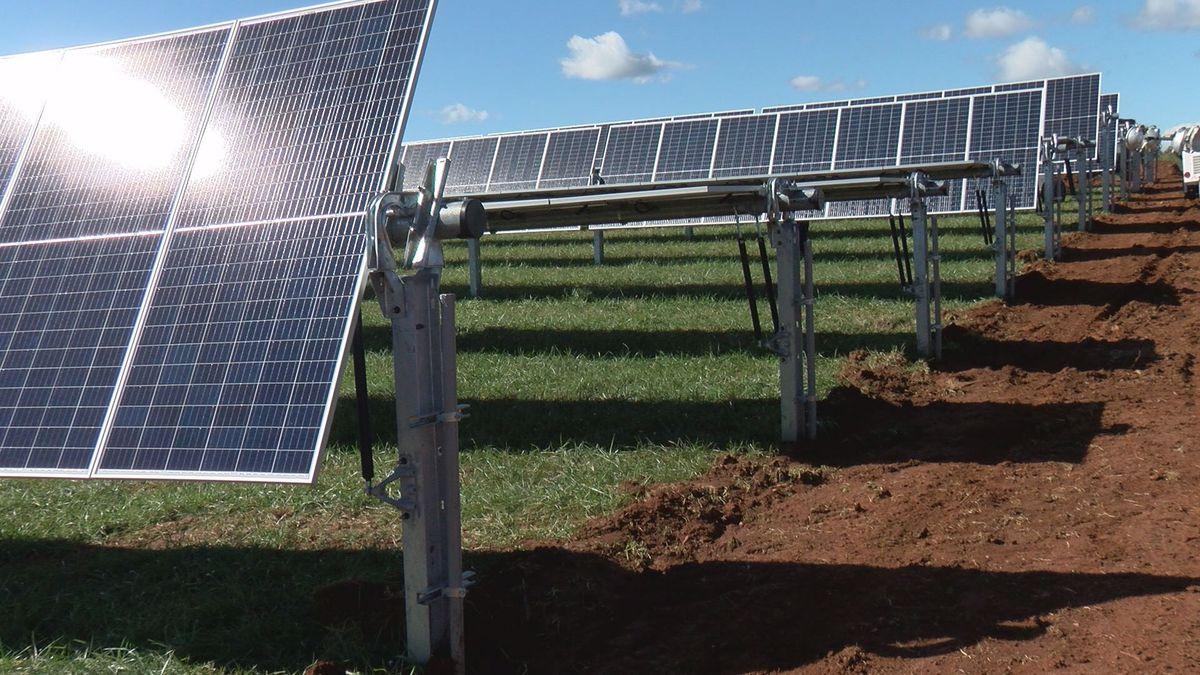Solar panels at Bedford Solar farm (WDBJ7).