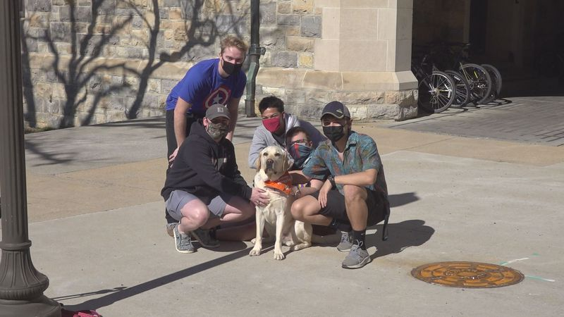 Students pose with Virginia Tech Therapy Dog, Derek, on spring break wellness days.