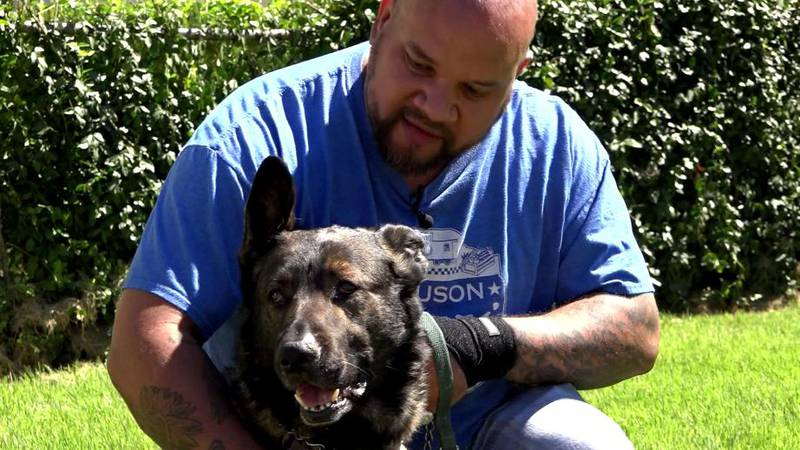 Drew Canaday, a Ferguson police officer, and his dog Ozzie sprang into action to save their...