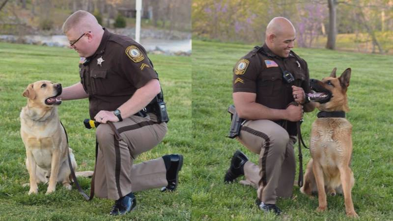 Two Pulaski County K9's retire from the sheriff's office