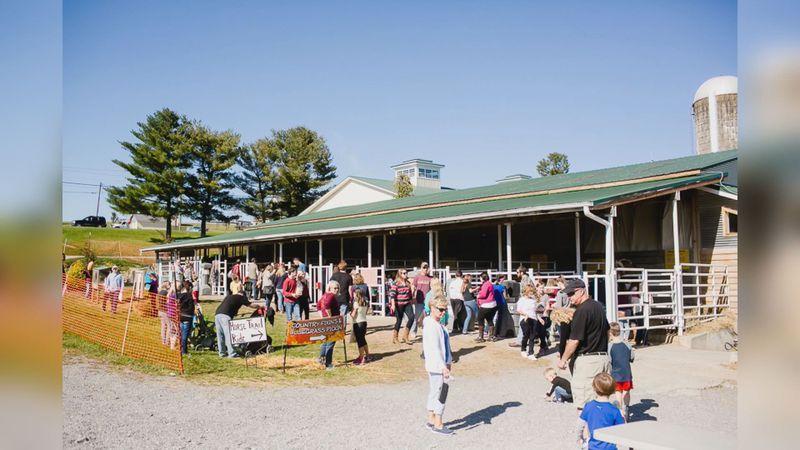 Visitors enjoy Sinkland Farms annual Pumpkin Festival.