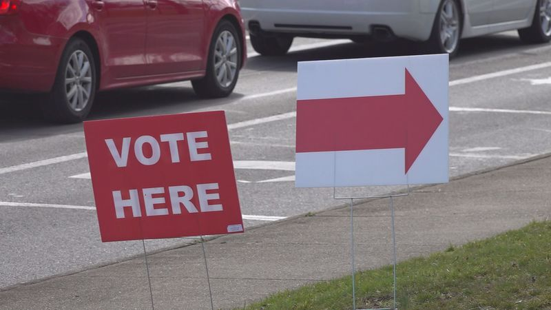 Virginia has a bumper crop of candidates, with 32 Democrats and Republicans running for...