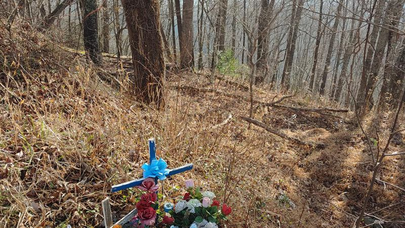 This wooded area in North Carolina is where the remains of 13-year-old Nicole Lovell were found...