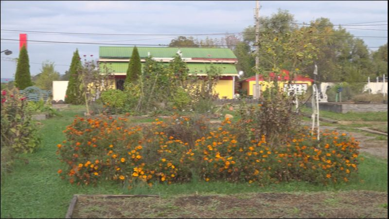 It's the end of the growing season at the Mountain View Community Garden in Roanoke.